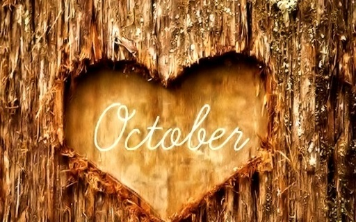 October wrap up 2