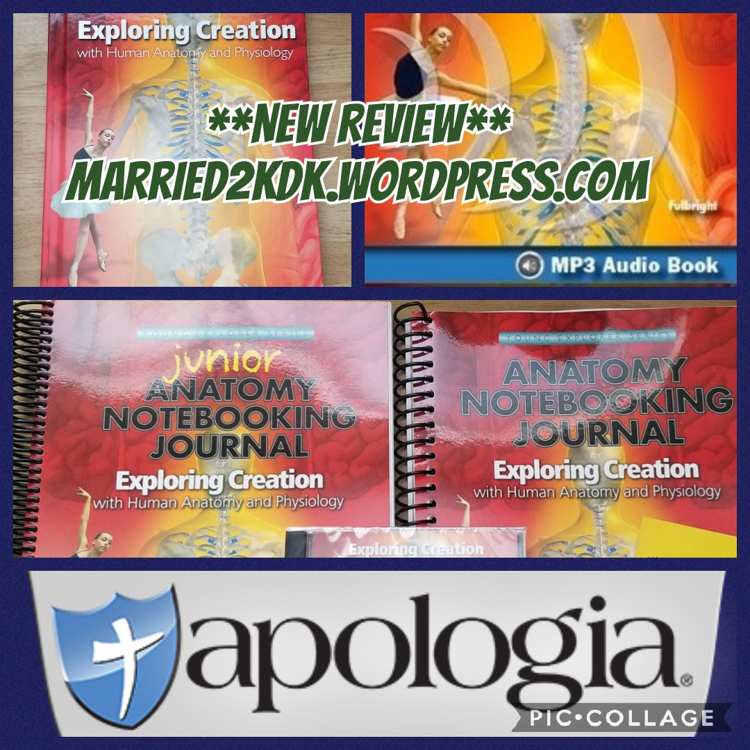 Review: Apologia Anatomy & Physiology Course | Marriage, Motherhood ...